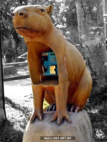 telefoanepubliceinbr01.jpg