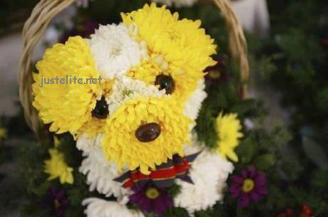 Doggy Flowers