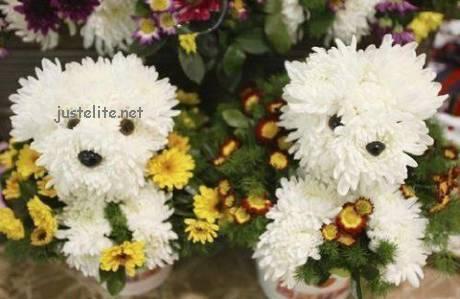 Doggy Flowers