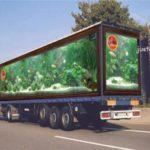 Truck cool paint