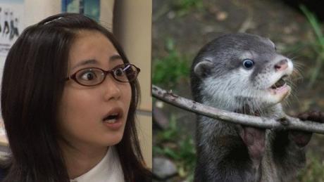 Similar photos