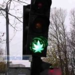 Traffic light for leafs